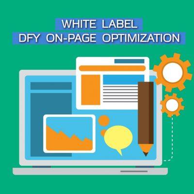 DFY-On-Page-Optimization